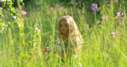 светловолосая девочка в поле иван-чая живой баланс