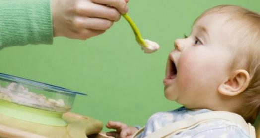 ребенок кушает творог из закваски живой баланс из ложечки