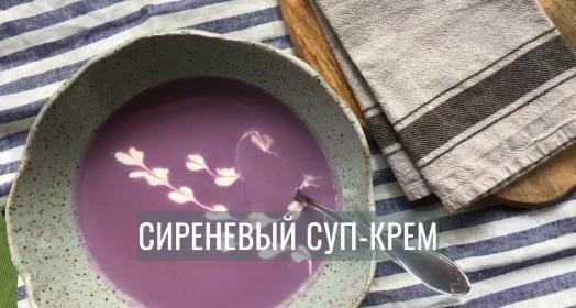 Видео-инструкция к приготовлению сиреневого крем-супа из закваски Живой Баланс