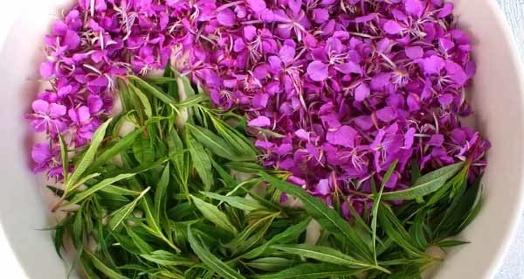 цветы и листья иван-чая живой баланс в белой миске